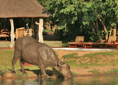 Monwana Game Lodge 2