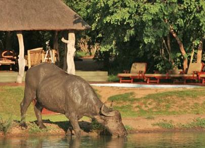 Monwana Game Lodge 2