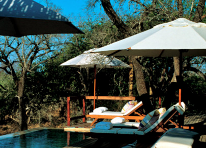 Royal Malewane Luxury Safari Lodge 4