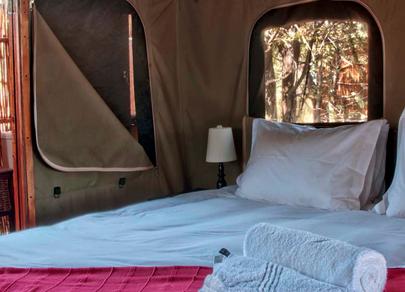 Shindzela tented camp 1